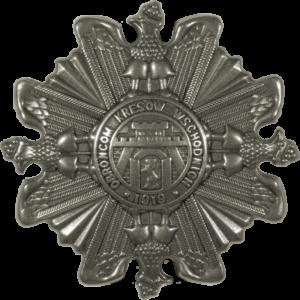 """Odznaka pamiątkowa """"Orlęta"""""""